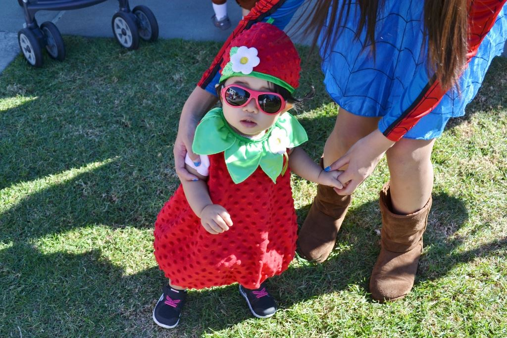 Little Pumpkin Patch 2015